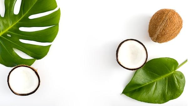 Tropische blätter und kokosnuss draufsicht