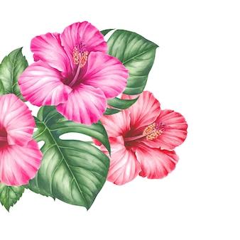 Tropische blüten und blätter