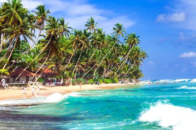 Tropische ferien in sri lanka