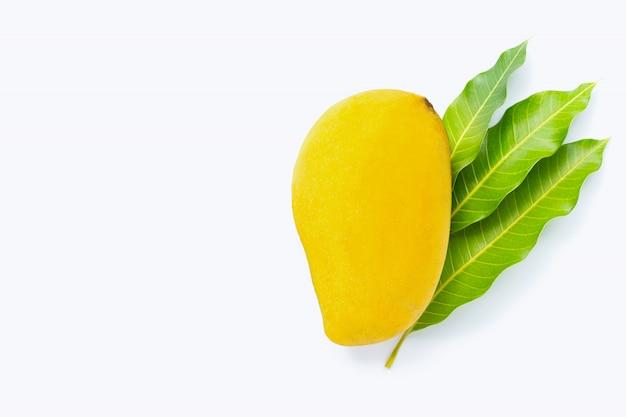 Tropische frucht mango auf weißem hintergrund