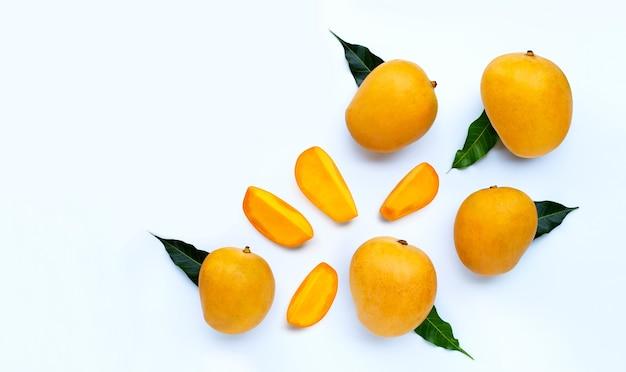 Tropische frucht, mango. draufsicht