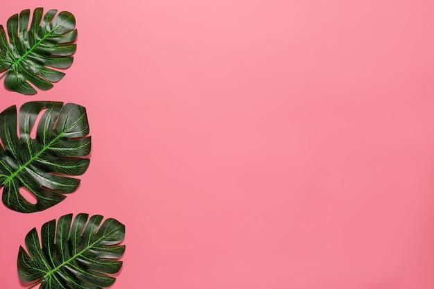 Tropische große grüne blätter als rand auf der linken seite mit rosa hintergrund. sommer-konzept. flache lage, ansicht von oben.