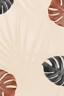 Tropische monstera-blätter mit palmblättern-schattenhintergrund