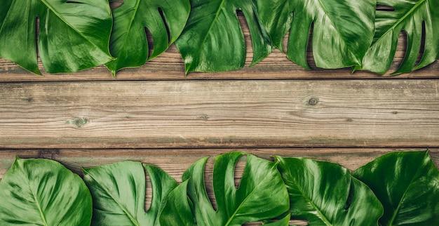 Tropische monsterblätter auf hölzernem hintergrund