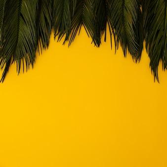 Tropische palmblätter auf gelb