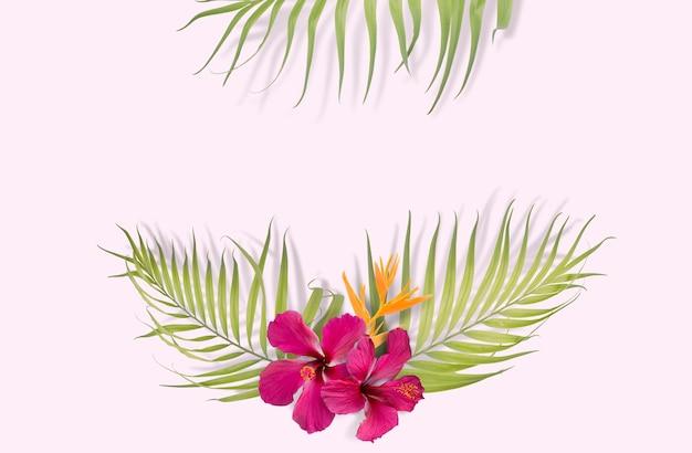 Tropische palmblätter auf rosa hintergrund. minimal natur