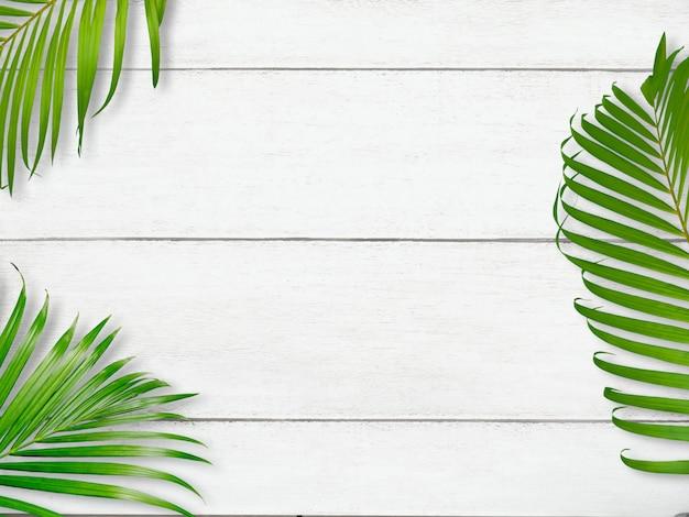 Tropische palmblätter auf weißer holzoberfläche