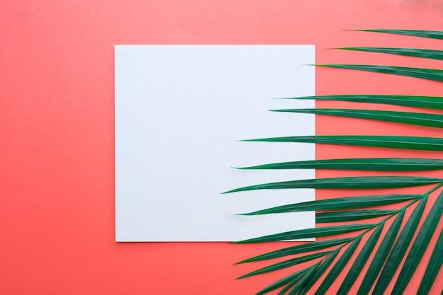 Tropische palmblätter mit weißem papierkartenrahmen auf pastellfarbenem hintergrund. dschungelblattnahaufnahme. botanische naturkonzepte. blumenelemententwurf, grünes laub