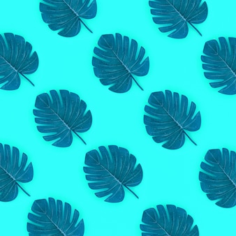 Tropische palmmonsterablätter liegen auf grün