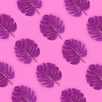 Tropische palmmonsterablätter liegen auf rosa