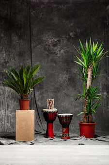 Tropische pflanzen und trommeln über grauer wand
