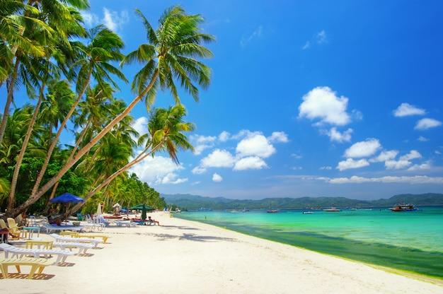 Tropische strandlandschaft mit kokospalmen und türkisfarbenem meer. boracay insel, philippinen