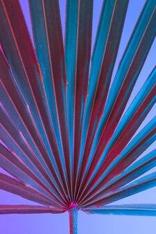 Tropische und palmblätter in lebendigen holografischen neonfarben mit kräftigem farbverlauf
