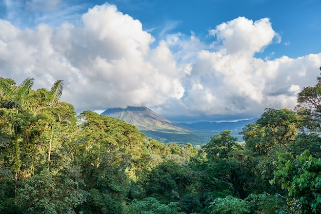 Tropische wälder mit vulkan an nationalpark arenal in costa rica