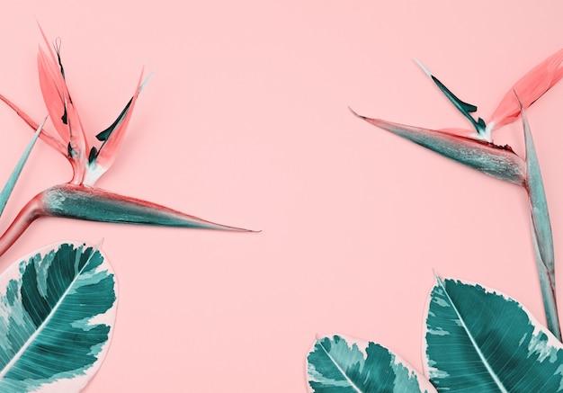Tropische zusammensetzung mit paradiesvogel und blättern auf rosa