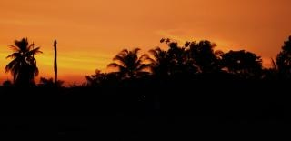 Tropischen sonnenuntergang shilhouette