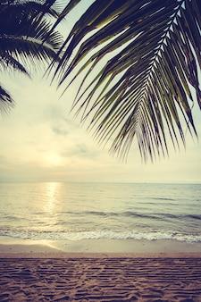 Tropischer baum himmel blatt gelb