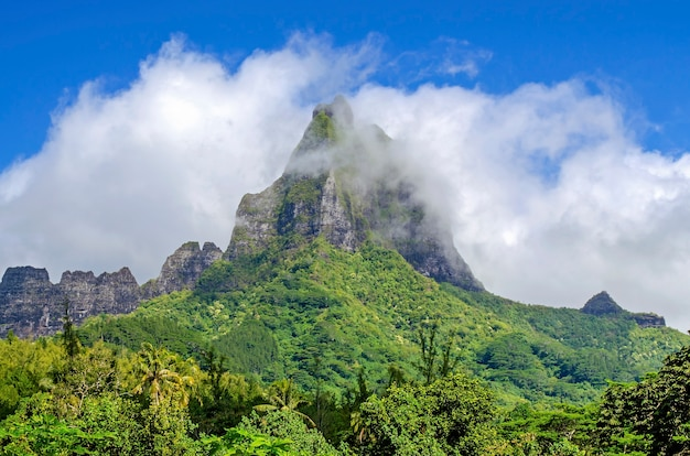 Tropischer berg in moorea, französisch-polynesien