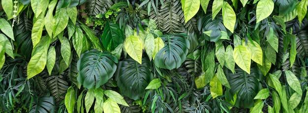 Tropischer blätter- und blumenhintergrund. naturhintergrund des vertikalen gartens mit tropischem grünem blatt