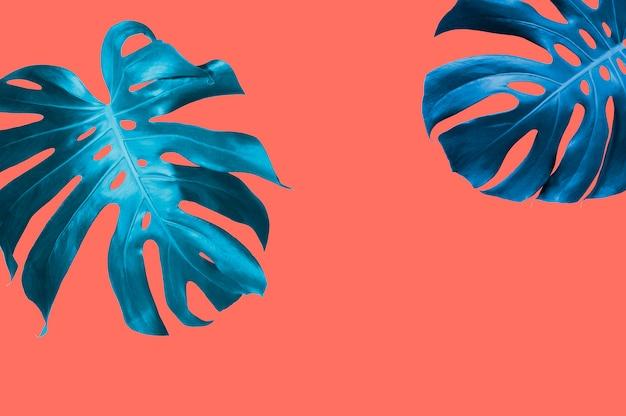Tropischer blatthintergrund des sommers mit pantone farbe der lebenden koralle des jahres 2019