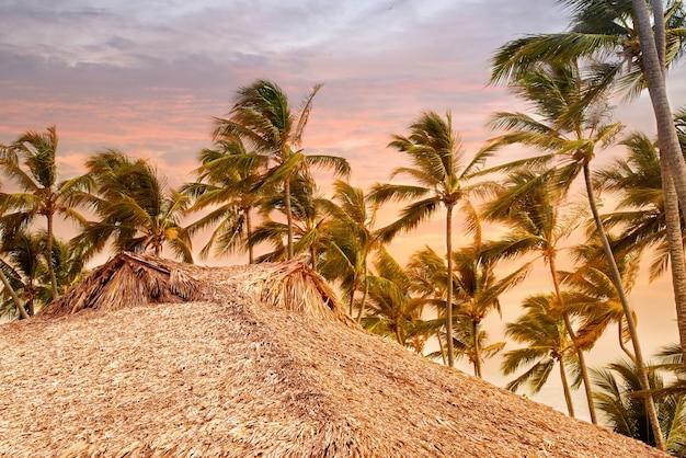 Tropischer bungalow und palme neben der erstaunlichen blauen lagune.