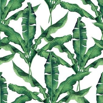 Tropischer naturhintergrund des aquarells mit nahtlosem musterhintergrund der hand gezeichneten bananenblätter.