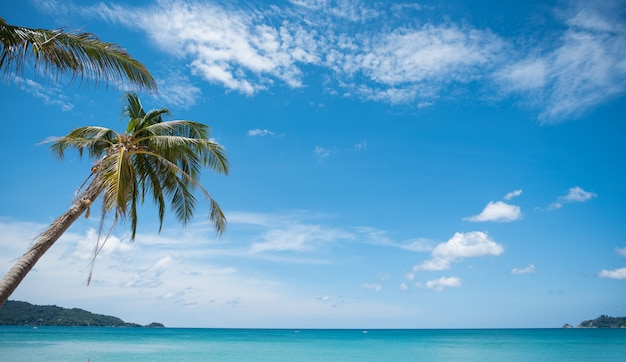 Tropischer paradiesstrand mit weißem sand und kokospalmenreisetourismus