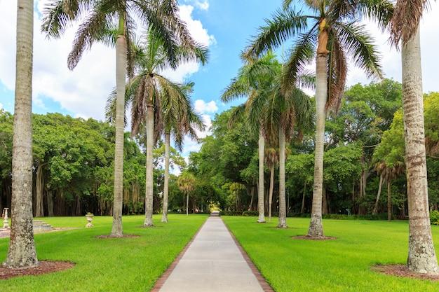 Tropischer park