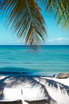 Tropischer sommerstrand mit palmenblattzweig-see- und himmelhintergrund