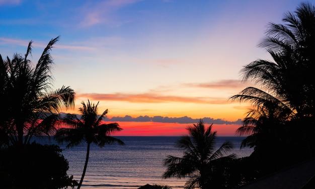Tropischer sonnenuntergang
