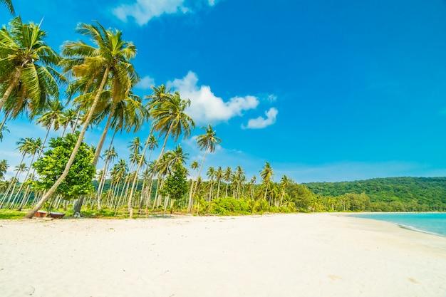 Tropischer strand der schönen natur