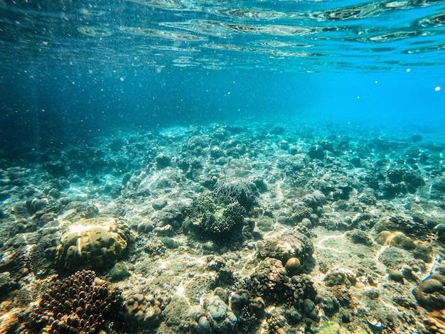 Tropischer strand in el nido, palawan, philippinen