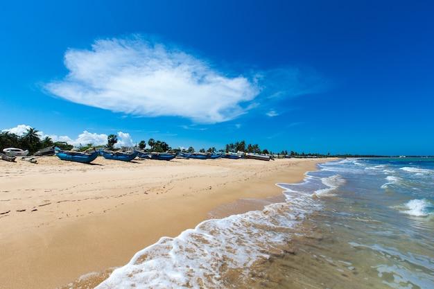 Tropischer strand in sri lanka. sommerferien- und ferienkonzept für den tourismus.