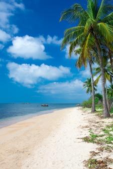 Tropischer strand in sri lanka. sommerferien- und ferienkonzept für tourismus