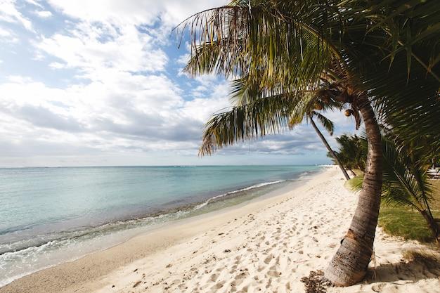 Tropischer strand, mauritius