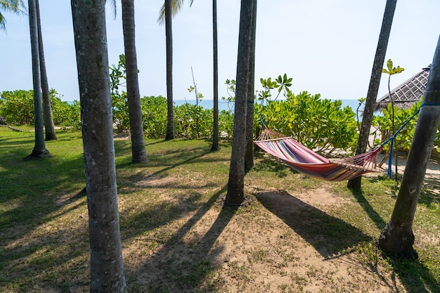 Tropischer strand mit hängematte unter den palmen im sonnenlicht
