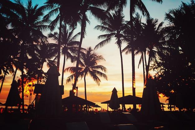 Tropischer strand mit palmen und regenschirmen