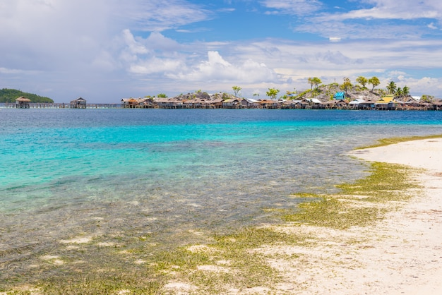 Tropischer strand, transparentes wasser des türkises in den fern-togean-inseln, sulawesi, indonesien.