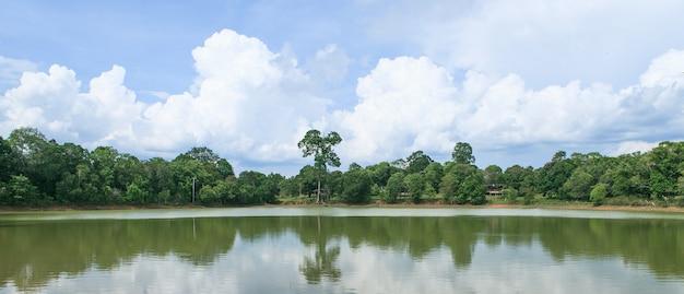 Tropischer wald und blauer himmel
