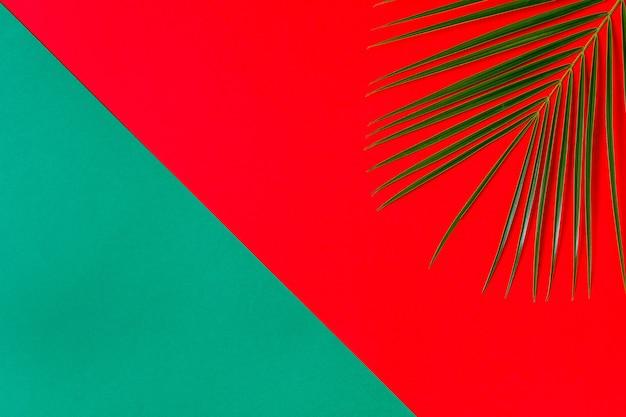 Tropisches blatt auf minimalistischem konzept des pastellhintergrunds