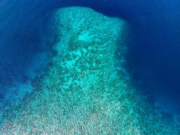 Tropisches karibisches meer des luftspitzenkorallenriffs unten, türkisblaues wasser. indonesien