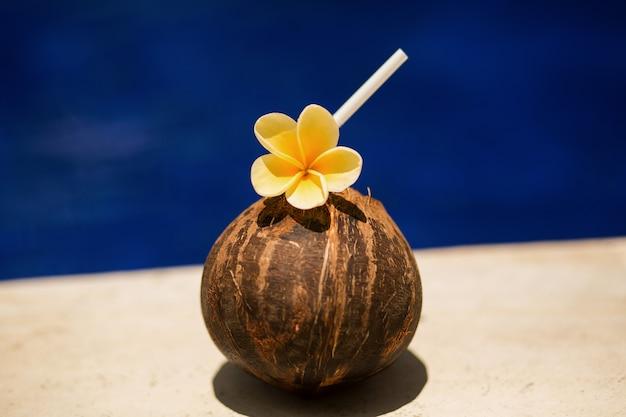 Tropisches kokosnussgetränk mit gelber blume, am swimmingpoolrand