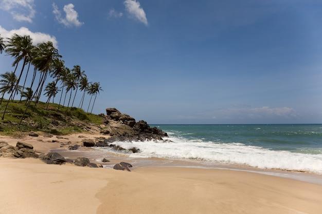 Tropisches paradies mit bäumen am strand gegen blauen himmel mit wolken