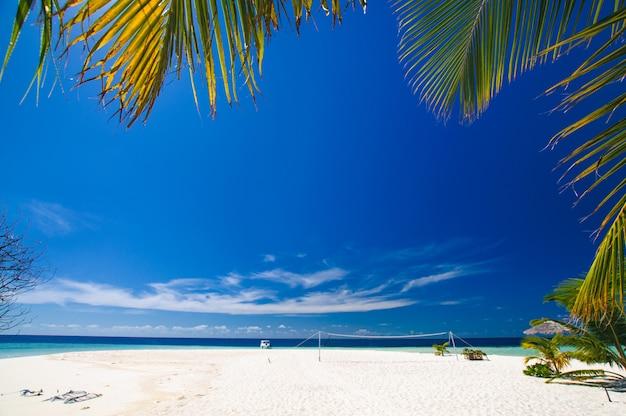 Tropisches paradies: schöne aussicht durch grüne palmblätter an einem weißen sandstrand auf den malediven
