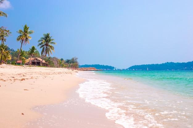 Tropisches seeufer mit palmen, blauer himmel an einem sonnigen tag, urlaub in asien.