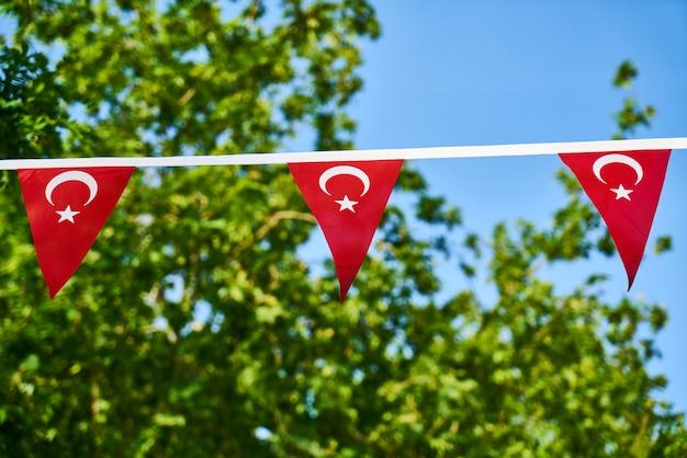 Türkische flagge und grünblätter