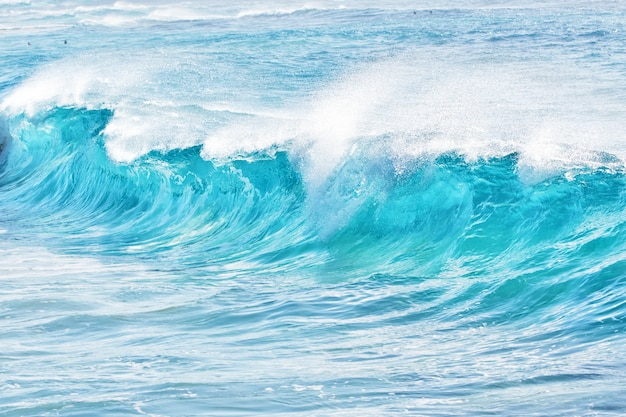 Türkisfarbene wellen am sandstrand, hawaii