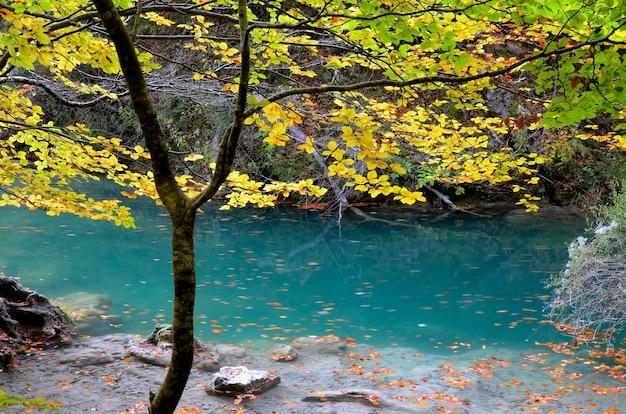 Türkisgrünes wasser im naturreservat des urederra river. navarra. spanien