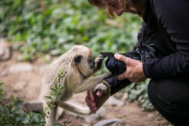 Tufting kapuziner und kamerafrau
