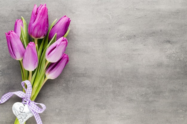 Tulpe auf grauem hintergrund